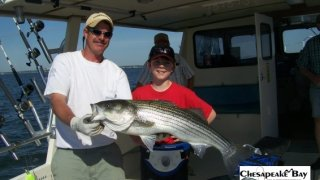 Chesapeake Bay Trophy Rockfish 4 #50