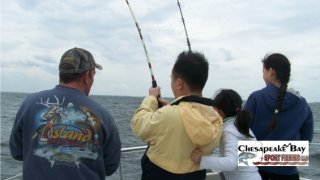 Chesapeake Bay Action Shots #6