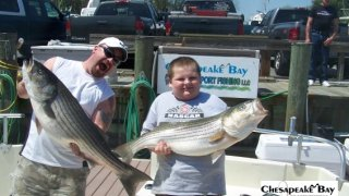 Chesapeake Bay Trophy Rockfish 4 #47