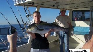 Chesapeake Bay Trophy Rockfish 4 #30