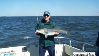 Chesapeake Bay Trophy Rockfish 4 #39