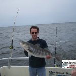 Chesapeake Bay Nice Rockfish 3 Album Cover