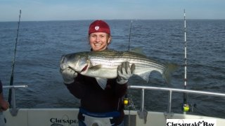 Chesapeake Bay Trophy Rockfish 4 #33
