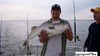Chesapeake Bay Trophy Rockfish 2 #10