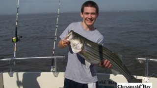 Chesapeake Bay Trophy Rockfish 4 #45