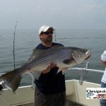Chesapeake Bay Trophy Rockfish 2 Album Cover