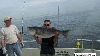 Chesapeake Bay Trophy Rockfish 4 #35