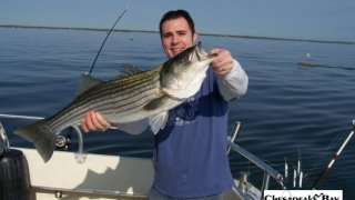 Chesapeake Bay Trophy Rockfish 3 #26