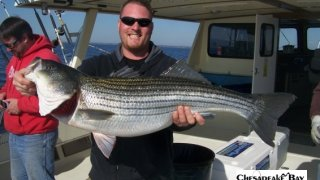 Chesapeake Bay Trophy Rockfish 4 #13