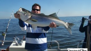 Chesapeake Bay Trophy Rockfish 4 #15