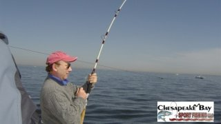 Chesapeake Bay Action Shots 2 #29