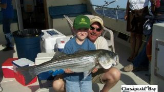 Chesapeake Bay Trophy Rockfish 3 #20