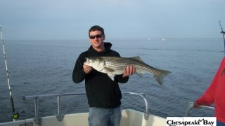 Chesapeake Bay Trophy Rockfish 4 #34