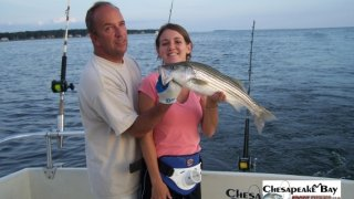 Chesapeake Bay Nice Rockfish #22
