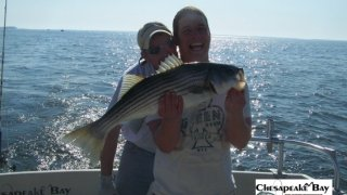 Chesapeake Bay Nice Rockfish 3 #11