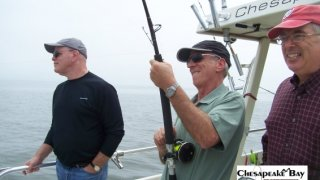 Chesapeake Bay Action Shots 2 #5
