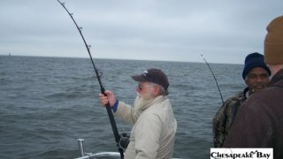 Chesapeake Bay Action Shots #14
