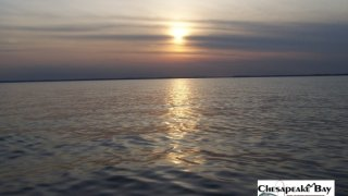 Chesapeake Bay Bay Scenery 2 #31