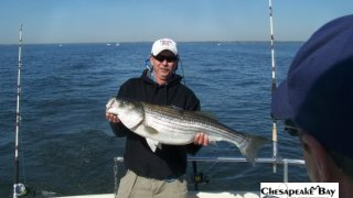 Chesapeake Bay Trophy Rockfish 4 #49