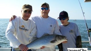 Chesapeake Bay Trophy Rockfish 3 #25