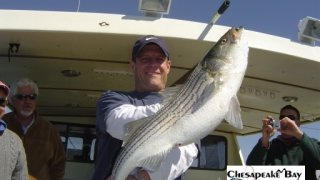 Chesapeake Bay Trophy Rockfish 2 #26