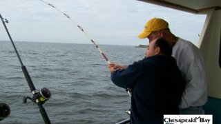 Chesapeake Bay Action Shots 2 #17