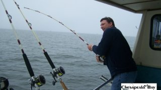 Chesapeake Bay Action Shots #25