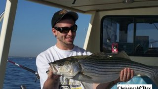 Chesapeake Bay Trophy Rockfish 4 #29