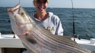 Chesapeake Bay Trophy Rockfish #1