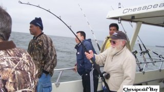Chesapeake Bay Action Shots #15