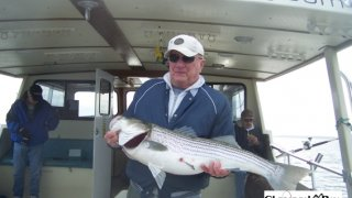 Chesapeake Bay Trophy Rockfish 4 #57