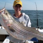 Chesapeake Bay Trophy Rockfish Album Cover