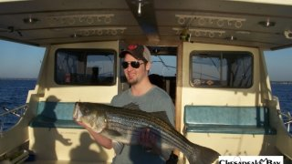 Chesapeake Bay Trophy Rockfish 4 #53