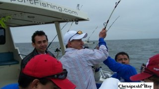 Chesapeake Bay Action Shots #28