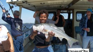Chesapeake Bay Nice Rockfish 2 #23