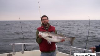 Chesapeake Bay Trophy Rockfish 4 #67