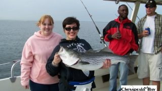Chesapeake Bay Trophy Rockfish 2 #14