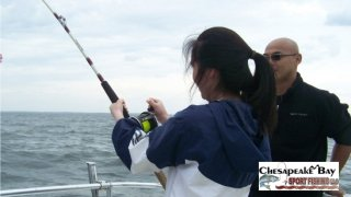 Chesapeake Bay Action Shots #9