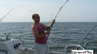 Chesapeake Bay Action Shots #29