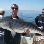 Chesapeake Bay Trophy Rockfish 4 Album Cover