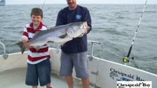 Chesapeake Bay Trophy Rockfish #35