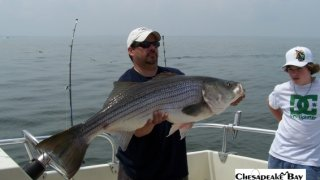 Chesapeake Bay Trophy Rockfish 2 #24
