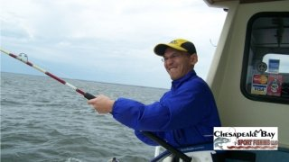 Chesapeake Bay Action Shots #8