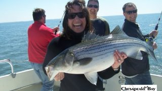 Chesapeake Bay Trophy Rockfish 4 #19