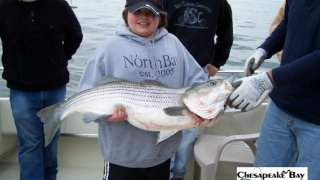 Chesapeake Bay Trophy Rockfish 3 #24