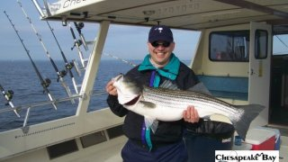 Chesapeake Bay Trophy Rockfish 4 #36