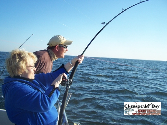 action shots 2 chesapeake bay sport fishing